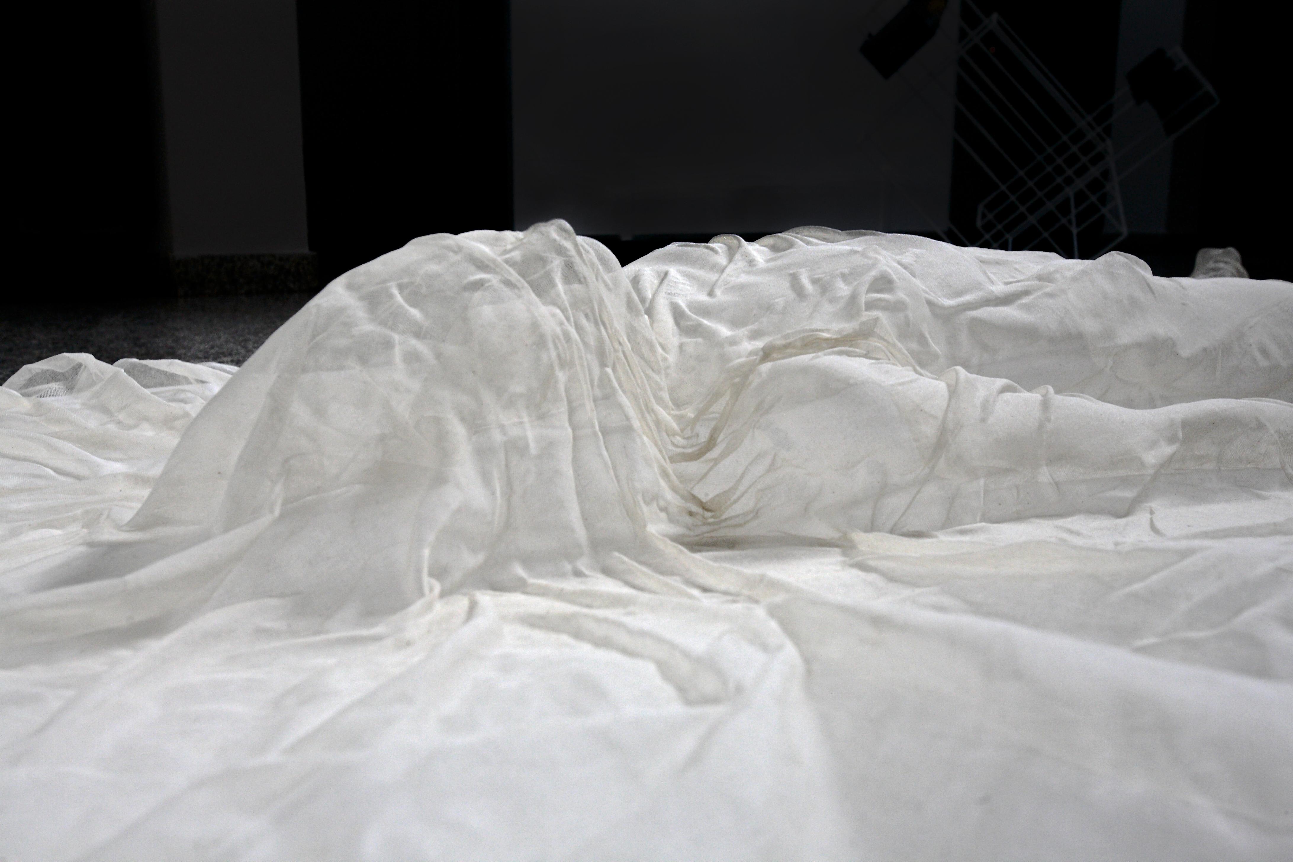 Federica Ferzoco, Studio-Museo Messina, Milano, 2016