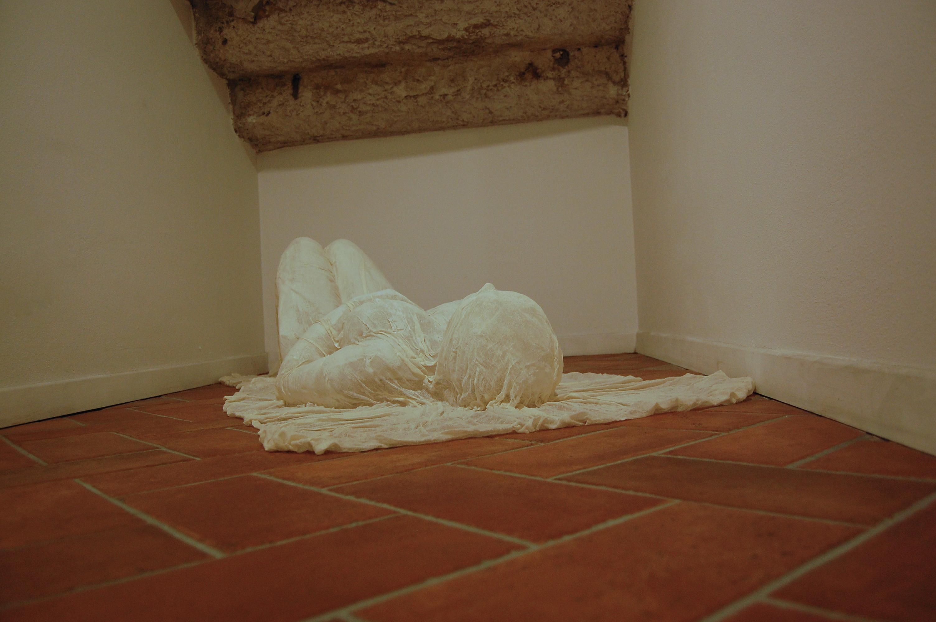 Federica Ferzoco, Body, Galleria E3, Brescia, 2014