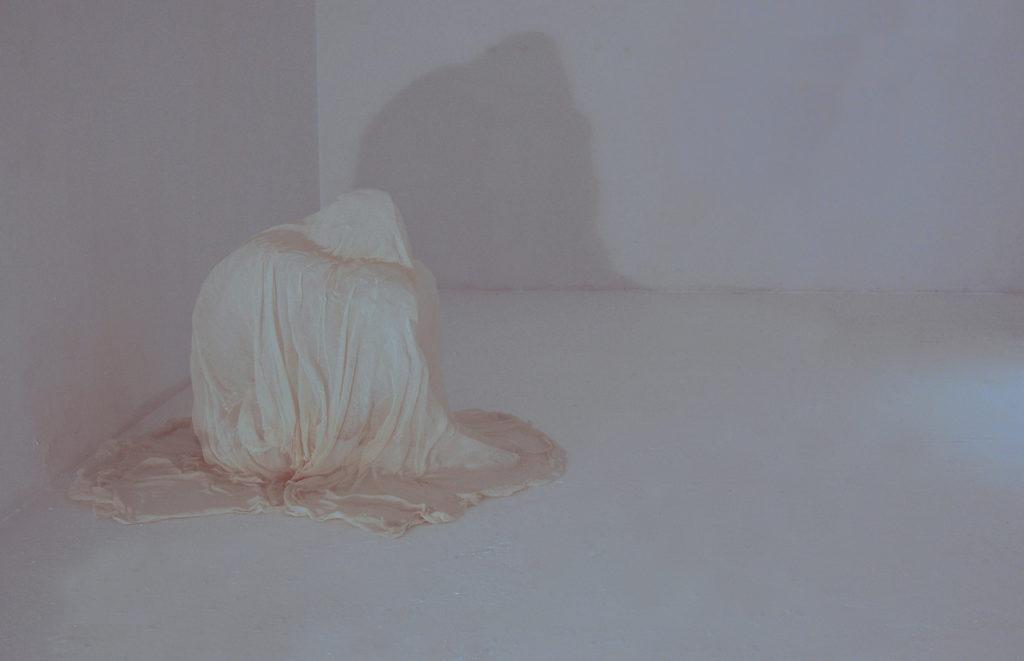 Federica Ferzoco, Affetto, Galleria Nuvole arte contemporanea, 2014